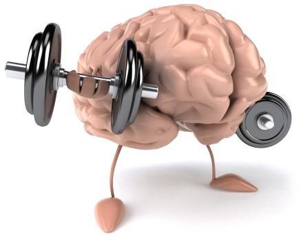 Bicepscurls för hjärnan